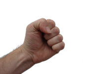 800px-Clenched_human_fist