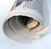 Rolled-up-newspaper-300x292