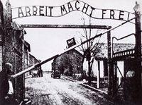 Auschwitz_web
