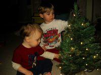 Boys' Little Tree