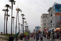 Venice.beach