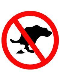 No-dog-poop
