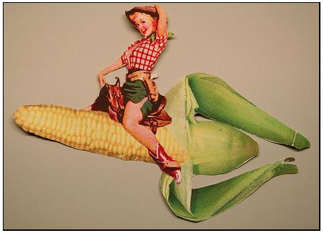 Corn_4
